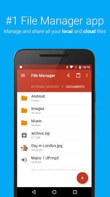 File Manager-1