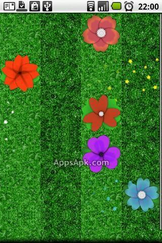 Daisy Garden Lite