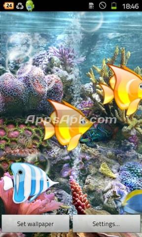 pics photos funny fish live wallpaper