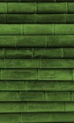 480x800-Wallpaper-[AppsApk]- (425)