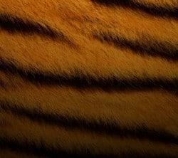1080x960-Wallpaper_AppsApk- (2150)