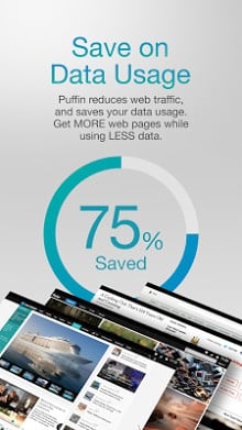 Puffin Web Browser-2