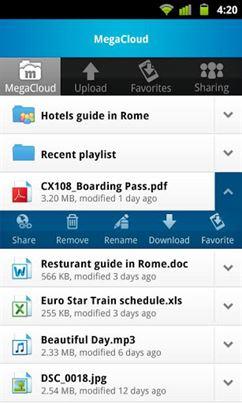 MegaCloud – 8GB Free Storage-2