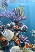 The Real Aquarium – LWP