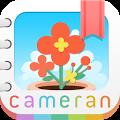 Cameran Album
