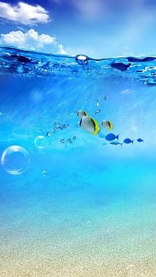 Ocean Live Wallpaper-1