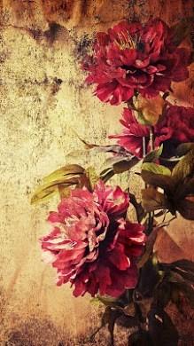 Vintage Roses Live Wallpaper-2