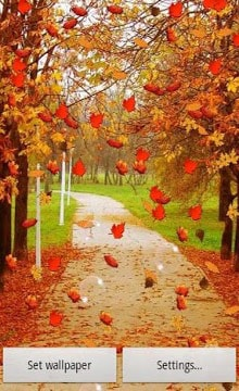 Autumn-Live-Wallpaper-2