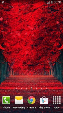 Red Leaves Live WallPaper-1