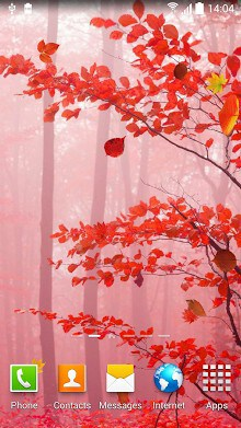 Autumn Wallpaper-2