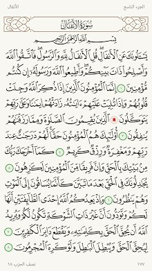 Ayah - A Quran Reading App-1