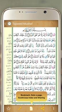 Read-Holy-Quran-2