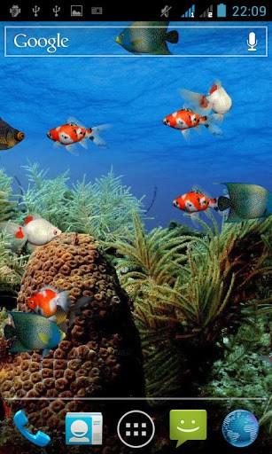 Aquarium Live Wallpaper Apk Download For Android