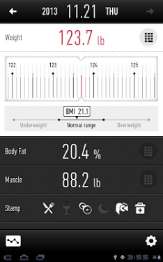 Weight Loss Tracker - RecStyle-1