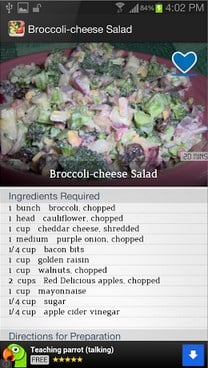 Salad Recipes FREE-2
