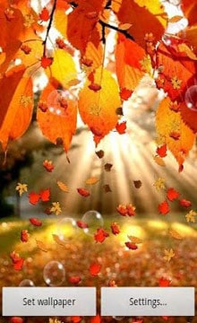 Autumn-Live-Wallpaper-1