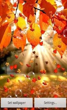 Autumn-Live-Wallpaper-1