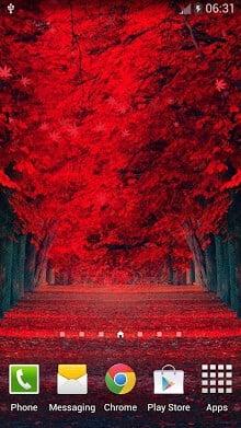 红叶动态壁纸-1