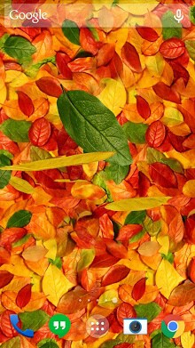 Autumn leaves 3D LWP-1