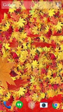 Autumn leaves 3D LWP-2