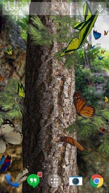 Butterflies 3D live wallpaper-1