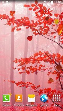 Autumn Wallpaper-2