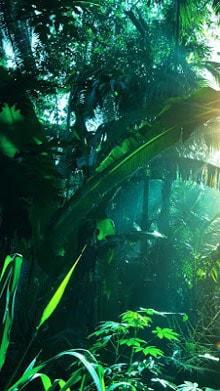 Jungle-Live-Wallpaper-1