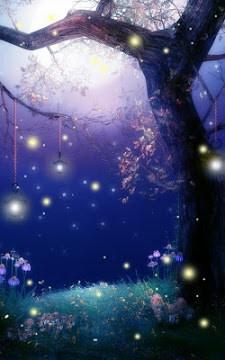 Fireflies Live Wallpaper-2
