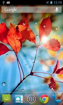 Rains Live Wallpaper-1
