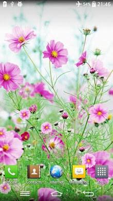 Sweet Flowers Live Wallpaper 1