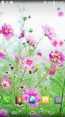 Sweet Flowers Live Wallpaper-2