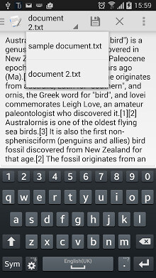 Text Editor-2