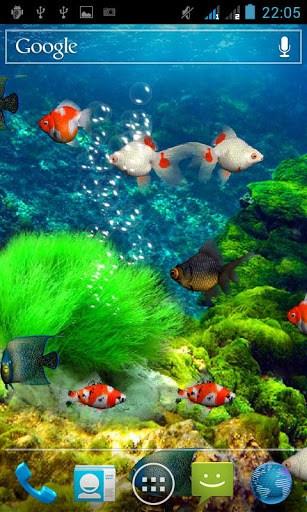 Aquarium live wallpaper apk download for android for Live fish aquarium wallpaper