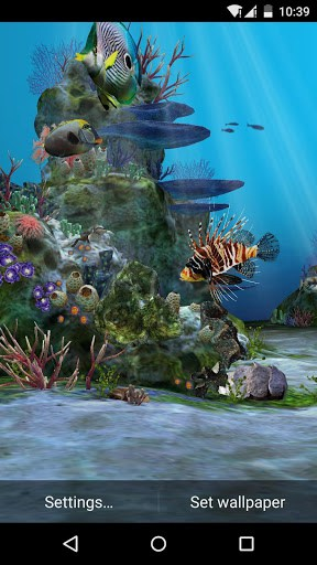 Colorful 3D Fishes Beautiful Background Of Sea Corals And Animated Air Bubbles Make Aquarium Live Wallpaper HD Even Better Than The Real Aquariums