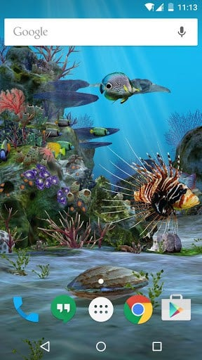 3d aquarium live wallpaper hd apk download for android