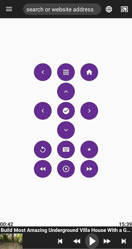 Cast Web Videos + Remote for Roku | APK Download For Android