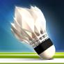 Ligue de badminton