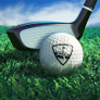WGT 골프