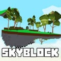icon of com.SkyBlockRoblox.ObbyWorld