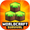 World Craft : Crafting and Building Simulator 1.0