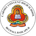 icon of com.appscook.parentconnect.ccsbadlapur
