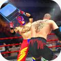 Wrestling Cage Championship : WRESTLING GAMES 2.2