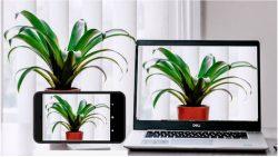 screenshot of com.jacksoftw.webcam